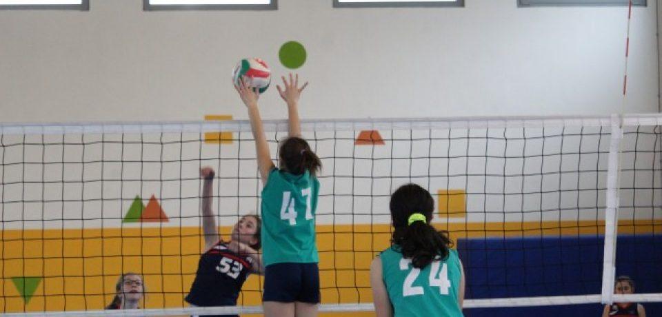 La Fipav decreta la conclusione definitiva di tutti i campionati della stagione 2019/2020